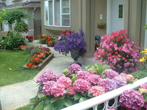 Lila's Mom's garden